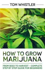 How to Grow Marijuana: From Seed to Harvest – Complete Step by Step Guide for Beginners