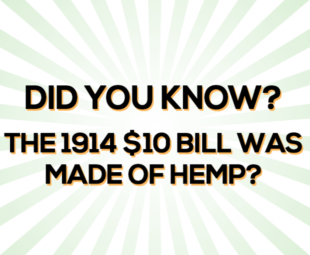 hempdollar 620x511 - Hemp 10 Dollar Bill