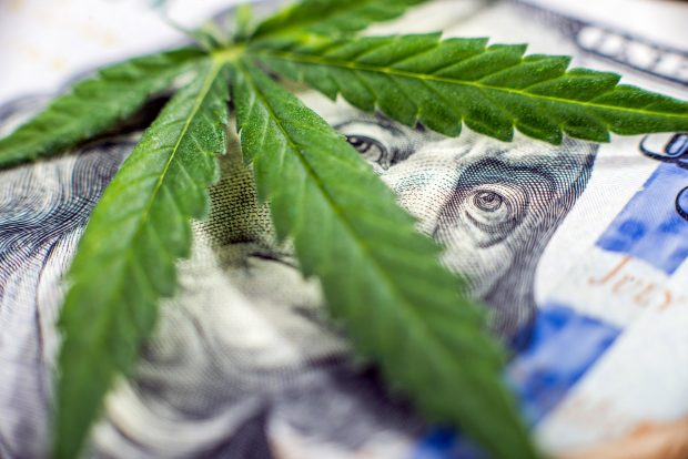cannamoney 620x414 - Financing Options for Starting a Weed Business