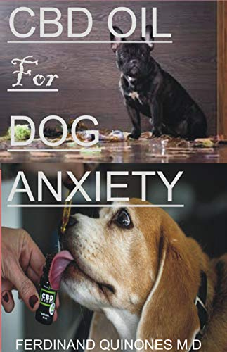 CBD OIL FOR DOG ANXIETY: EVERYTHING YOU NEED TO KNOW ON HOW TO USE CBD OIL TO TREAT AND CURE ANXIETY IN DOGS
